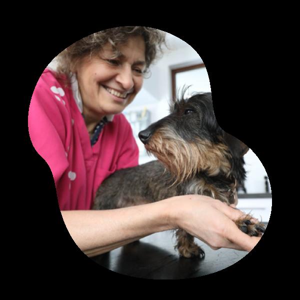 Docteur Nathalie Simon | Cabinet vétérinaire et ostéopathie animale à Sprimont Ostéopattes
