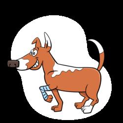 Ostéopattes | Cabinet vétérinaire et d'ostéopathie animale du docteur Simon et docteur Lausberg à Sprimont
